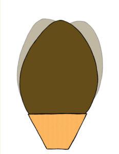 Il LibruUovo. L'uovo di Pasqua più bello.